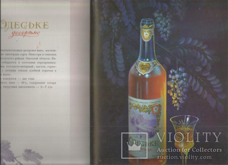 Каталог 1954 Украинские вина и коньяки Совмин Внешторгиздат, фото №8