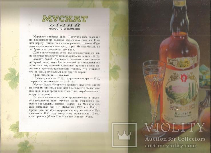 Каталог 1954 Украинские вина и коньяки Совмин Внешторгиздат, фото №10