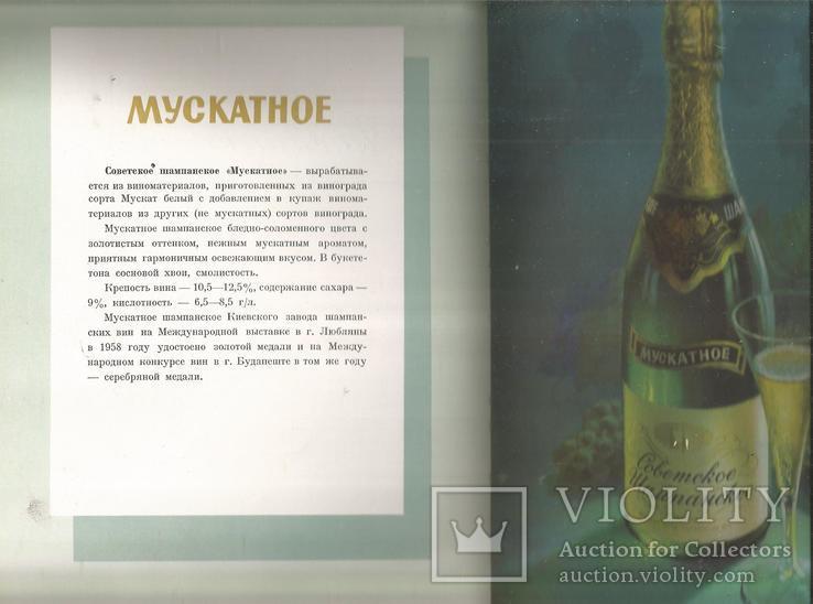 Каталог 1954 Украинские вина и коньяки Совмин Внешторгиздат, фото №13