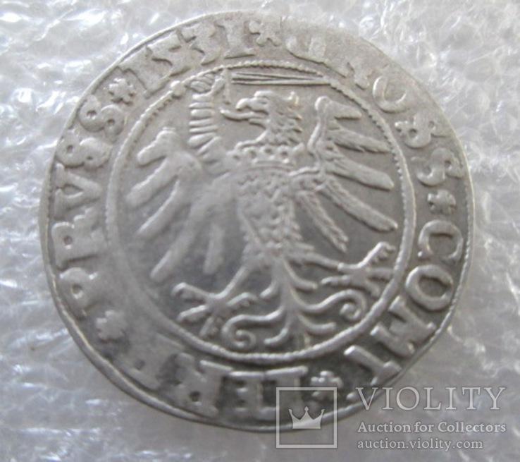 Грош 1531 г, Сигизмунд I Старый