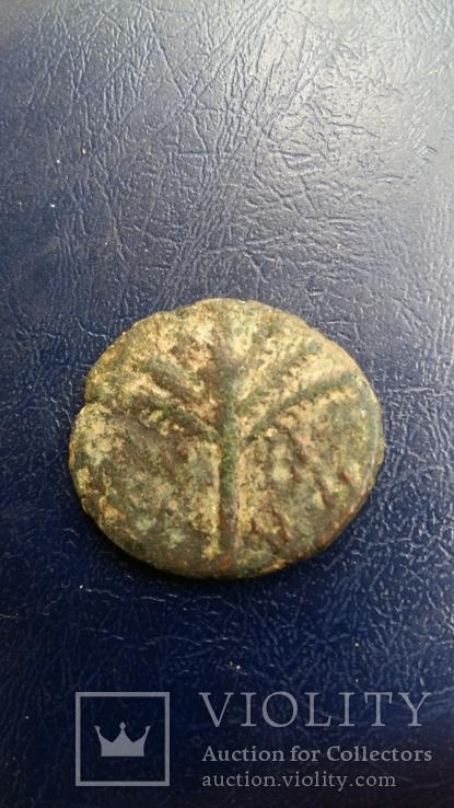 Иудея, 2-е восстание, Бар Кохба, Средн. бронза - 4, фото №3
