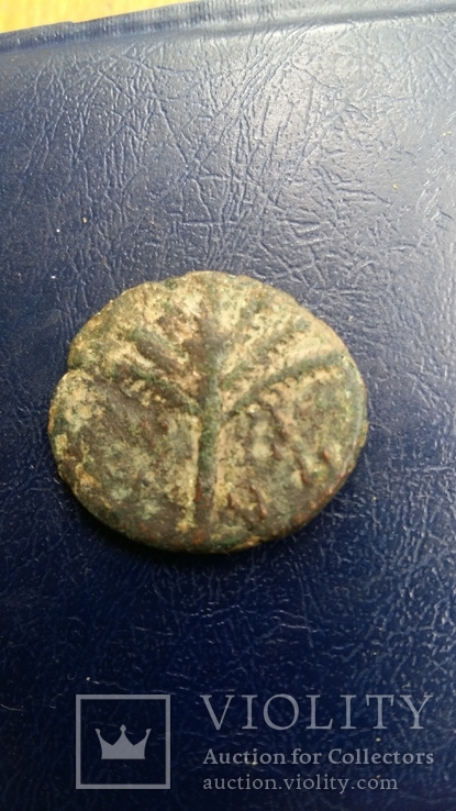 Иудея, 2-е восстание, Бар Кохба, Средн. бронза - 4, фото №5