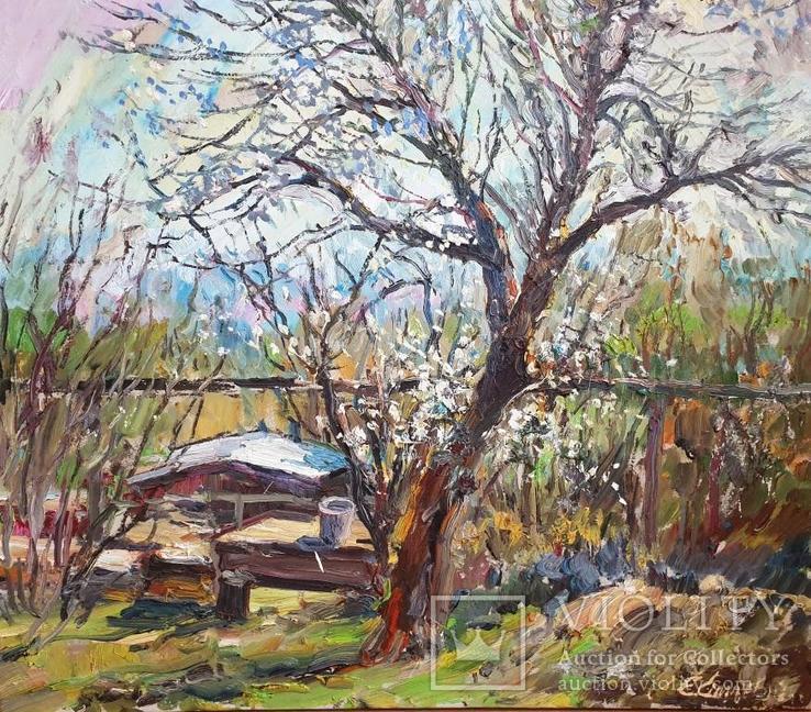 Весна пришла , Е. Спицевич