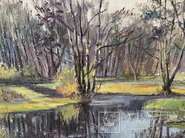 Ткаченко Е.С., «Весна, разлив», 43,5*66, фото №4