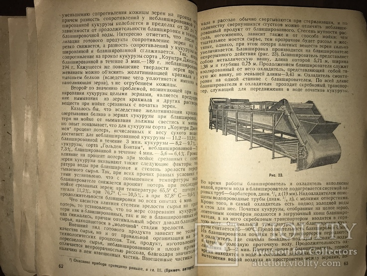 1932 Консервирование Сахарной кукурудзы, фото №6