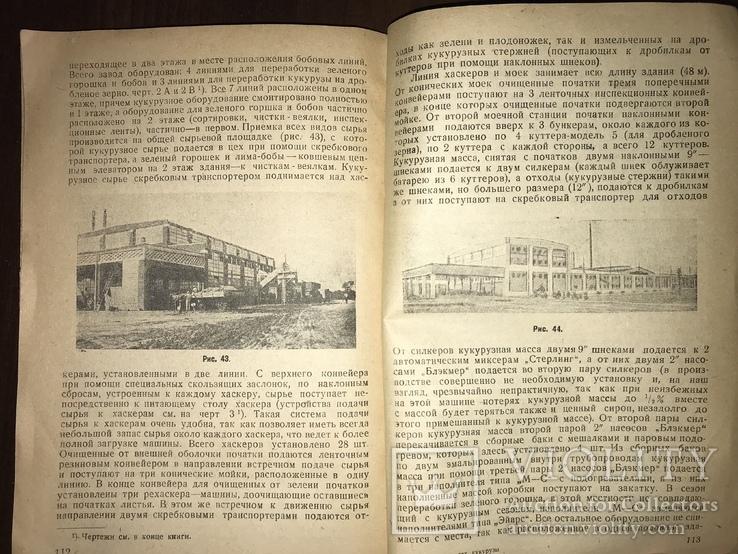 1932 Консервирование Сахарной кукурудзы, фото №12