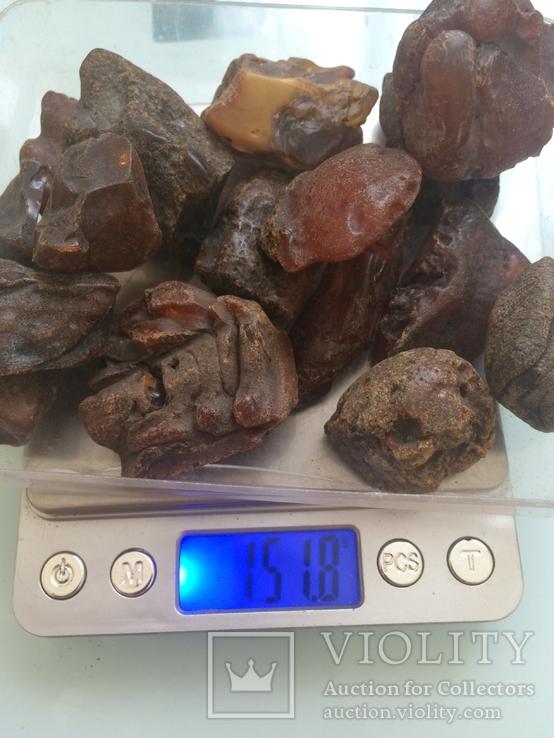 Янтарь 151,8 грамм, фото №3
