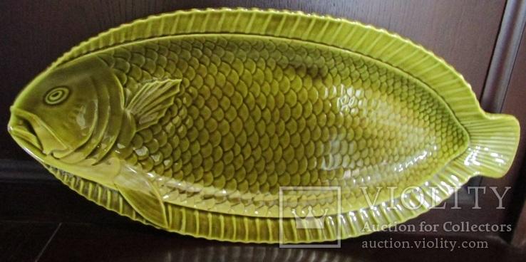 Огромное блюдо для подачи рыбы Майолика Sarreguemines French faïence  Majolica Франция, фото №9