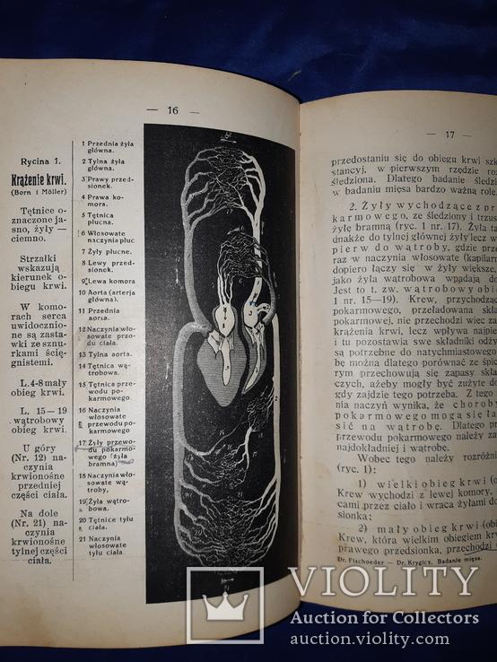 1927 Осмотр мяса, фото №9