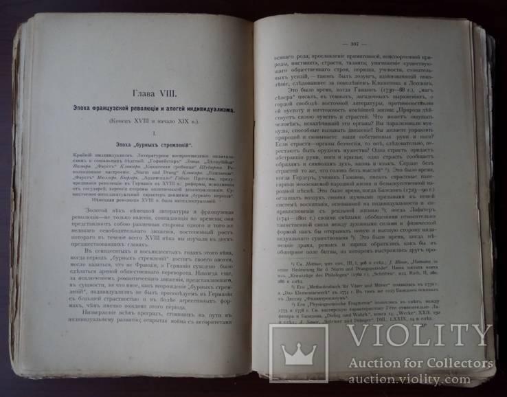 История немецкой литературы 1904 С 39 портретами, фото №10