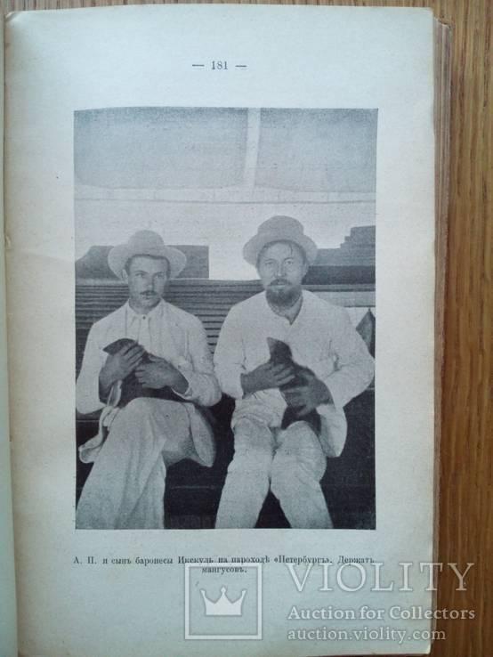Письма А.П. Чехова 1913г. С иллюстрациями., фото №12