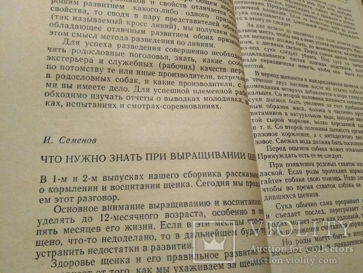 Клуб служебного собаководства., фото №4