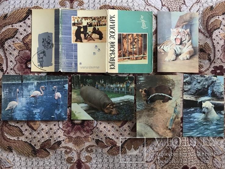 Набор открыток новосибирский зоопарк, ему картинки прикольные