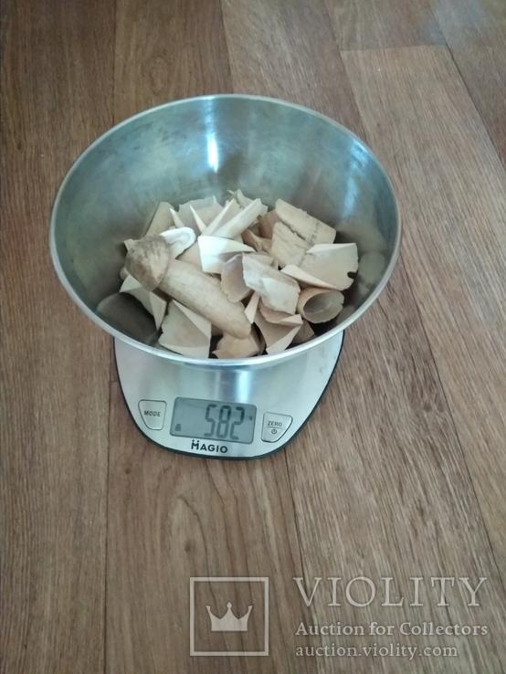 Зуб кашалота обрезки 0,58 кг, фото №6