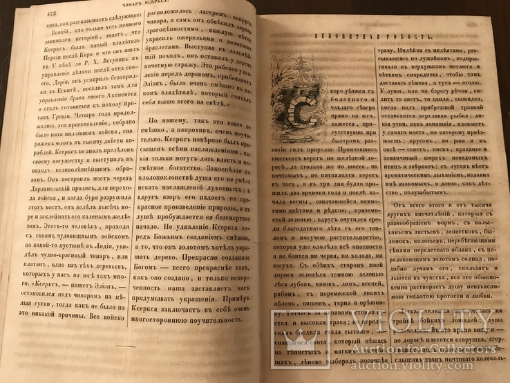 1854 Детские сказки Непонятная робость Шекспир, фото №7