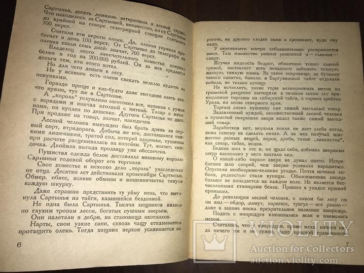 1932 Мех из болота Ондатра, фото №4