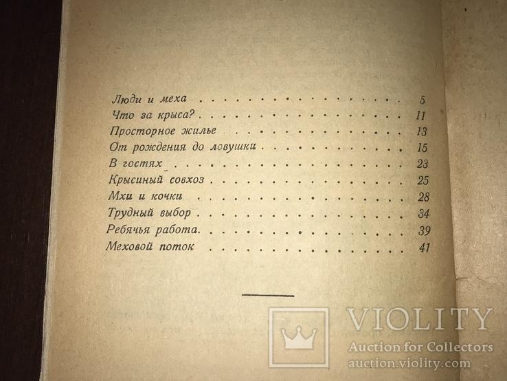 1932 Мех из болота Ондатра, фото №11