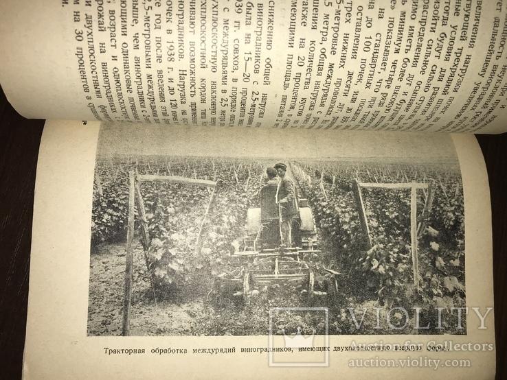 1940 За высокие урожаи Винограда, фото №11