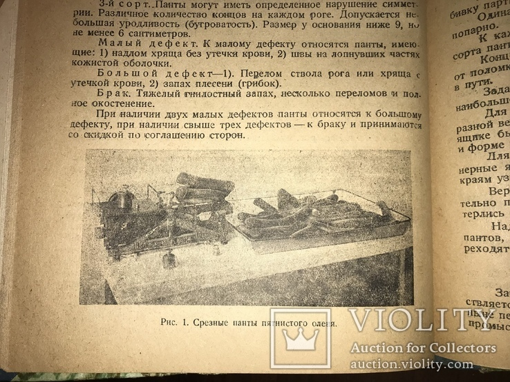 1932 Добыча Змей  Рогов оленей Кости Мамонта Морских зверей, фото №2