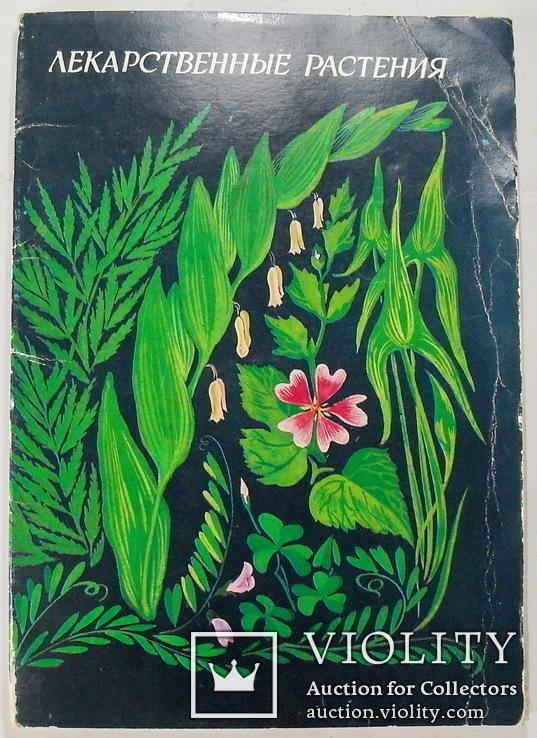 открытки лекарственные растения 1987 снова