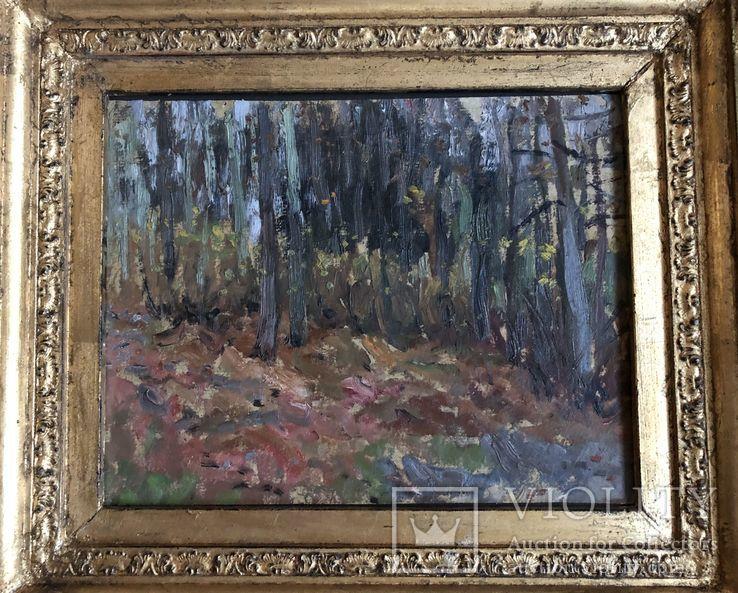 """Картина И.К. Цюпка """"Осенний лес"""" 1959г., фото №4"""
