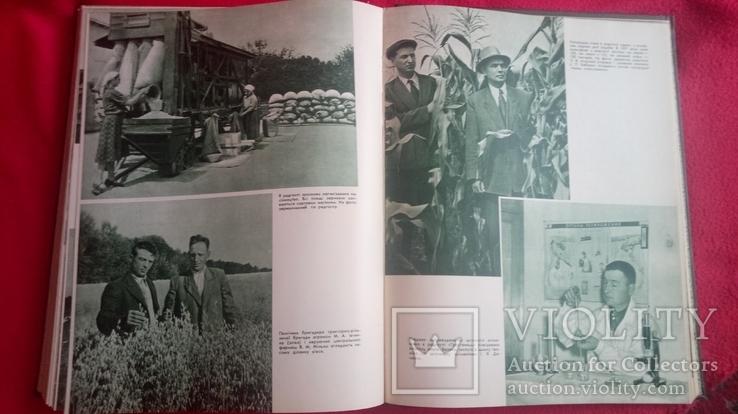 Книга Сільське Господарство Радянської України 1957р тир15000., фото №11