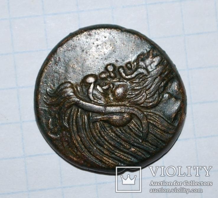 Пантикапей Грифон ПАN, фото №4