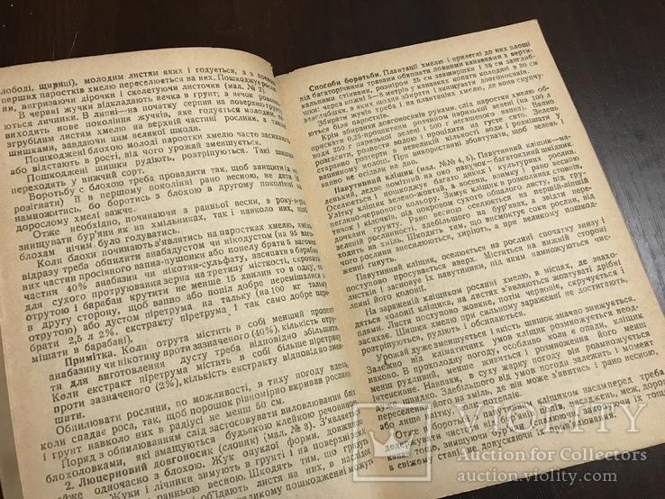 1940 Шкідники та хвороби Хмелю, фото №6