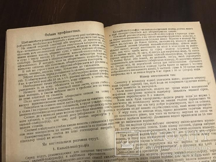 1940 Шкідники та хвороби Хмелю, фото №10