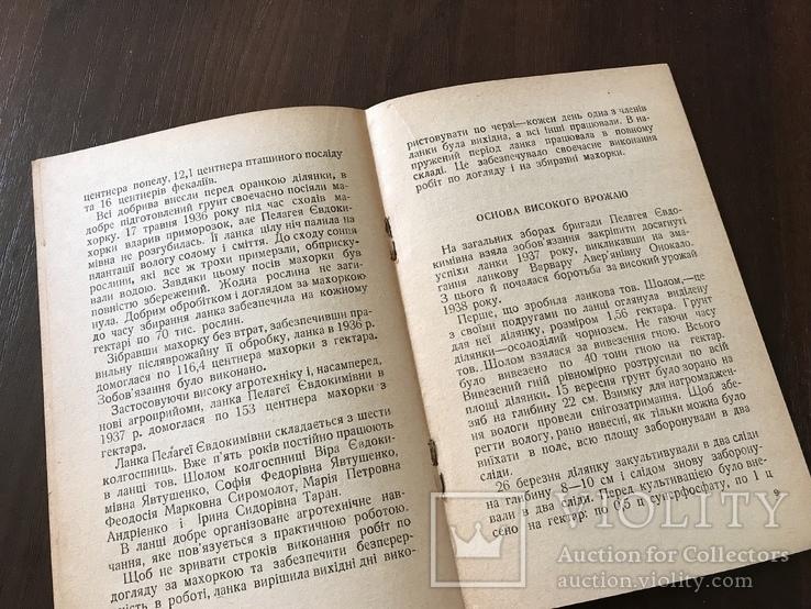 1939 Харків, Всесоюзна першість по Махорці, фото №6