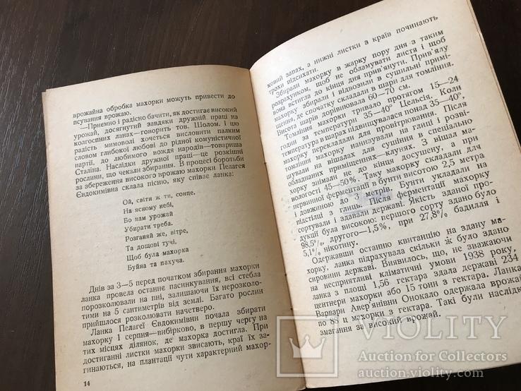 1939 Харків, Всесоюзна першість по Махорці, фото №9