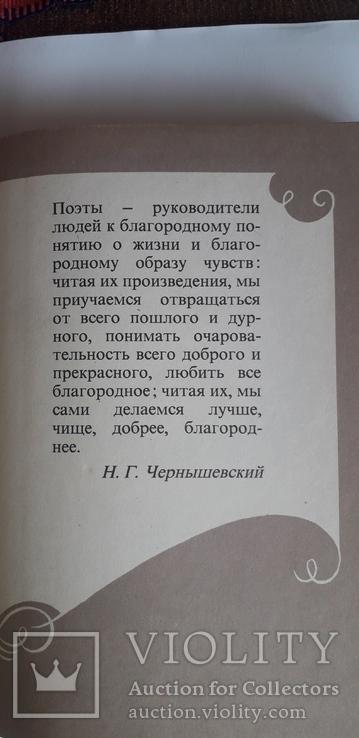 """""""В мире русской литературы"""" 6 класс 1988 год., фото №3"""
