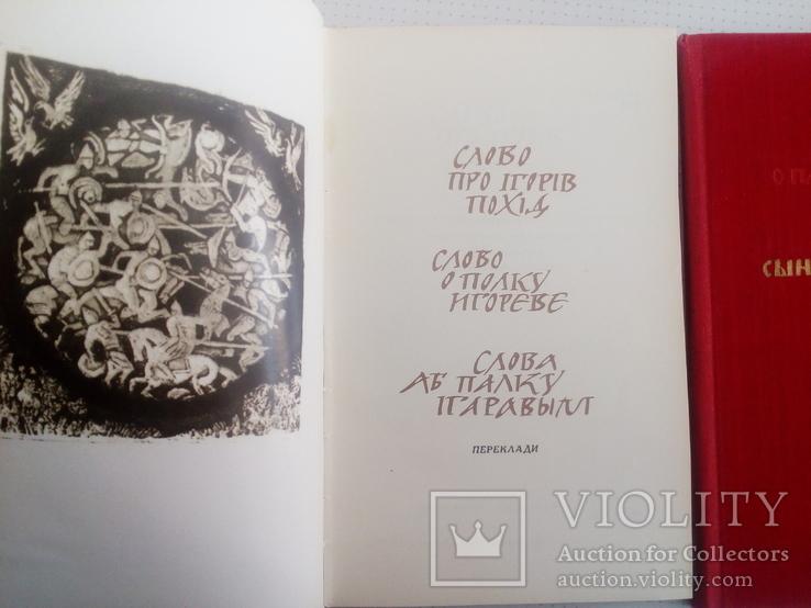 Слово о полку Игореве 2 книги, фото №7