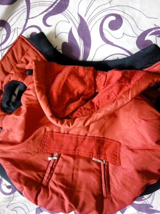 Одежда для собак, фото №3