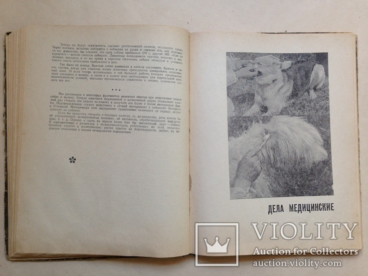 Твой друг   Служебное собаководство  1970  215 с. ил., фото №6