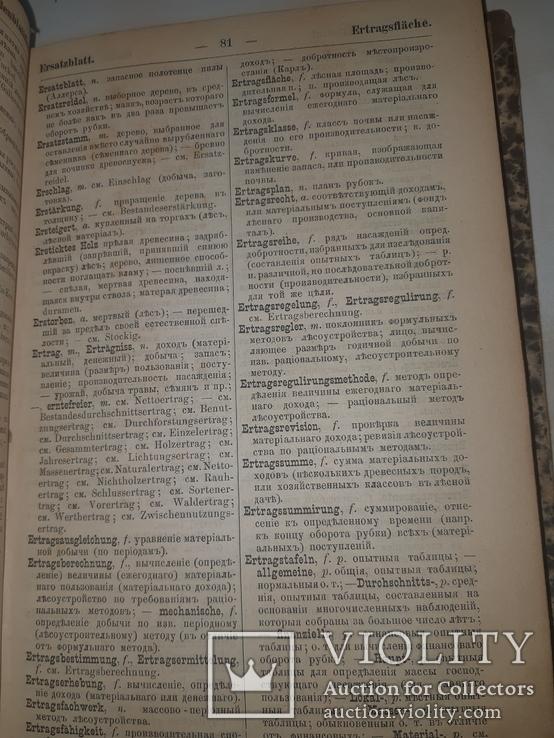 1889 Лесной словарь, фото №4