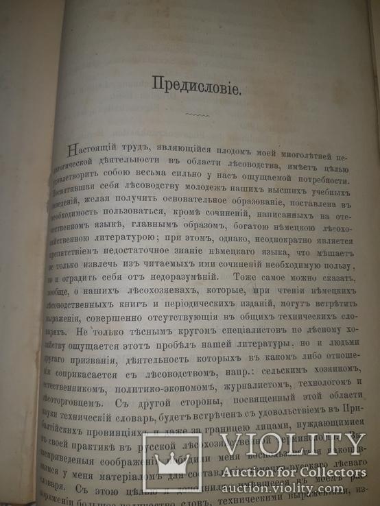 1889 Лесной словарь, фото №11