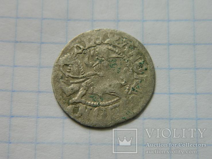 Півгріш Олександра 8., фото №2
