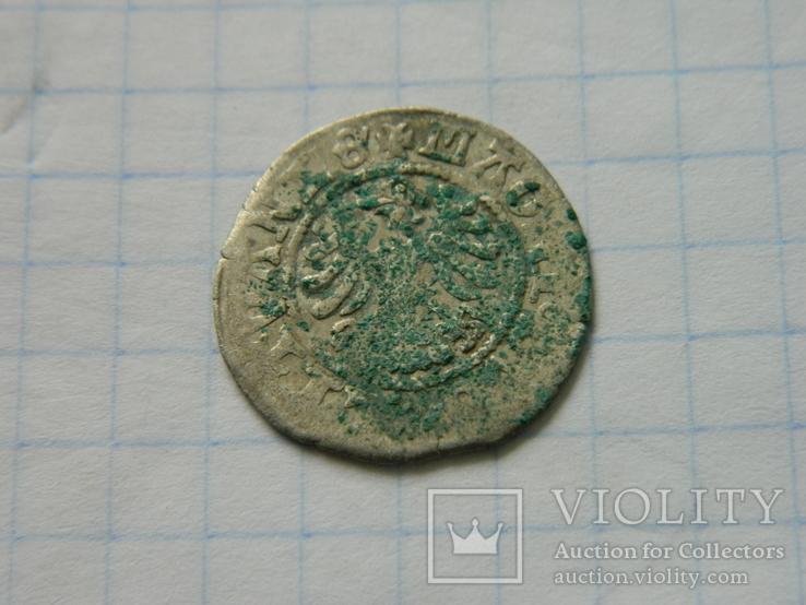 Півгріш Олександра 10., фото №5