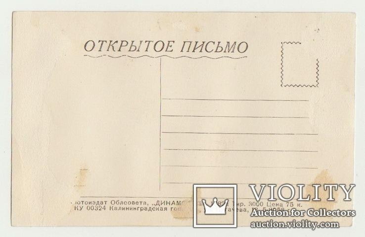 Харитонов, фото №3