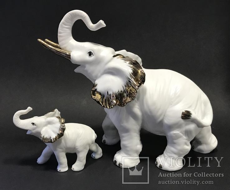 Слониха и слоненок, фото №2