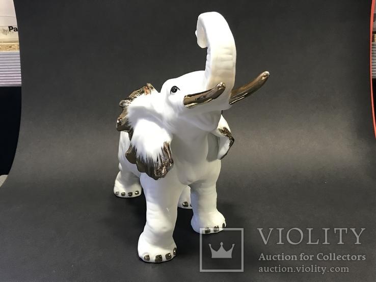 Слониха и слоненок, фото №7