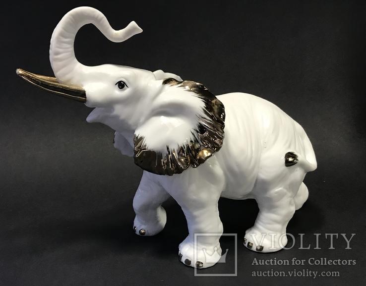 Слониха и слоненок, фото №8
