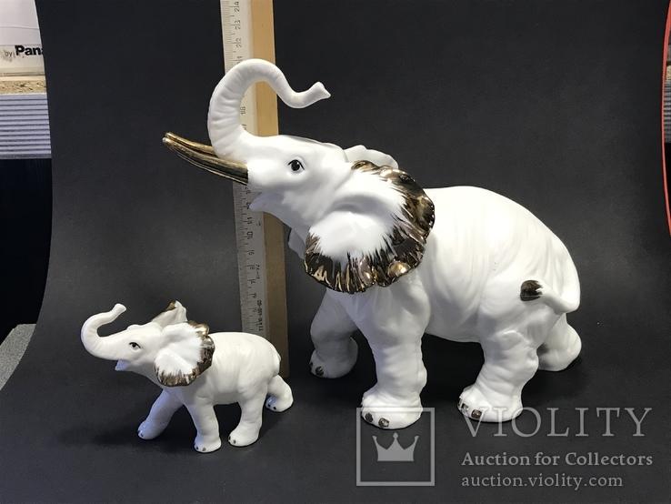 Слониха и слоненок, фото №10
