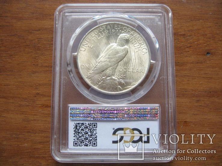 Серебряный Мирный доллар 1923 г. в слабе, фото №6