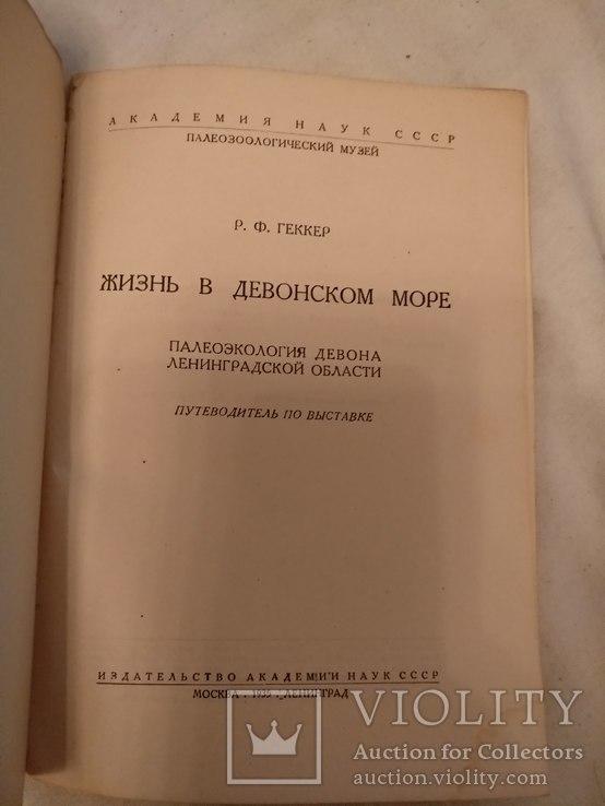 1935 Жизнь в Девонской море, фото №4