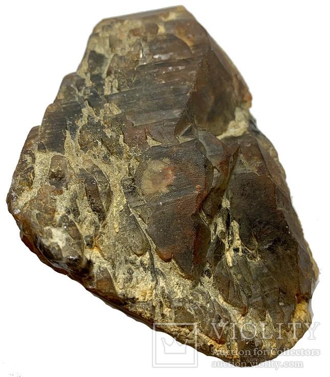 Димчастий кварц кристал з друзою 470г, фото №2
