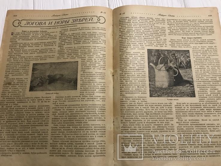 1917 Вокруг света Украина Т. Шевченко, фото №10