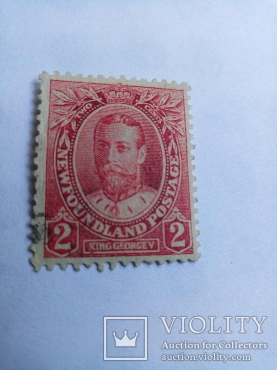 Ньюфаундленд английская колония