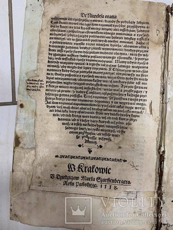 1558О воспитании государя Польша, фото №11
